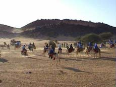 Responsible Tourism: The Camel Riders